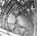 Raamtracering in koor (voor restauratie ) - 's-Gravenhage - 20085309 - RCE.jpg