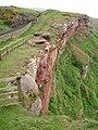 Railway and cliffs - geograph.org.uk - 477410.jpg