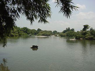 Kaveri im Ranganathittu-Vogelschutzgebiet nahe Shrirangapattana