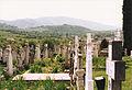 Rasinari graveyard 04.jpg