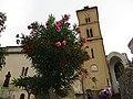 Ravello - panoramio (6).jpg