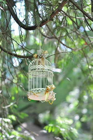 A birdcage seen in Ravenna Park, Seattle, Washington State, USA