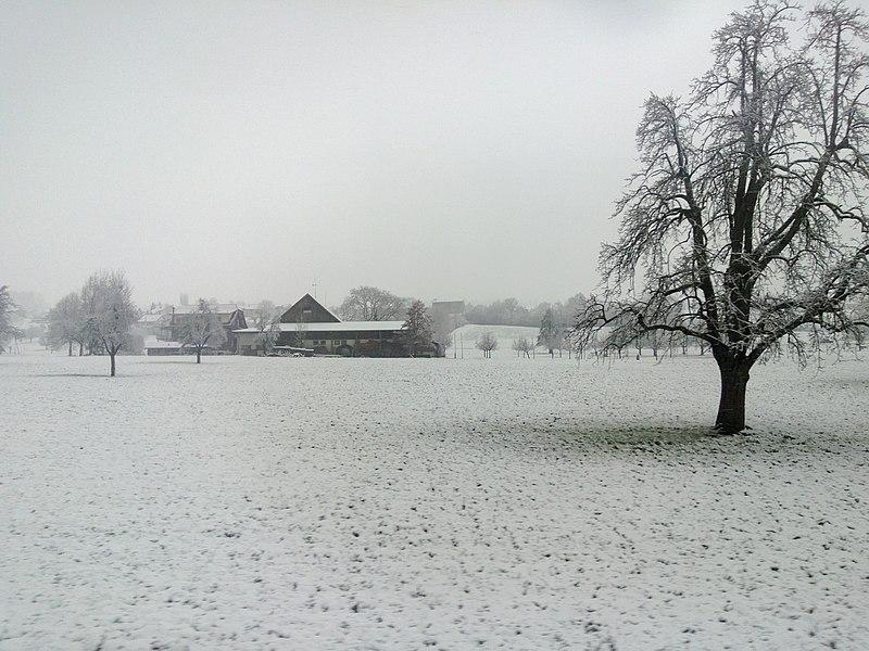 File:Reiden, Switzerland - panoramio.jpg