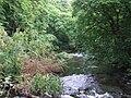 River Avon - geograph.org.uk - 903738.jpg