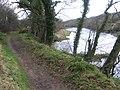 River Ayr Way after Tarholm - geograph.org.uk - 347374.jpg