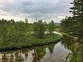 River Lutto in Urho Kekkonen National Park, Sodankylä (July 2018).jpg