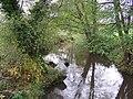 River Wey from Huntingford Bridge - geograph.org.uk - 1576375.jpg