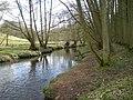 River Worfe - geograph.org.uk - 720225.jpg