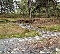 River bank erosion at Marshaw Wyre - geograph.org.uk - 12360.jpg