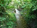 Rivière (Guémar) (2).jpg