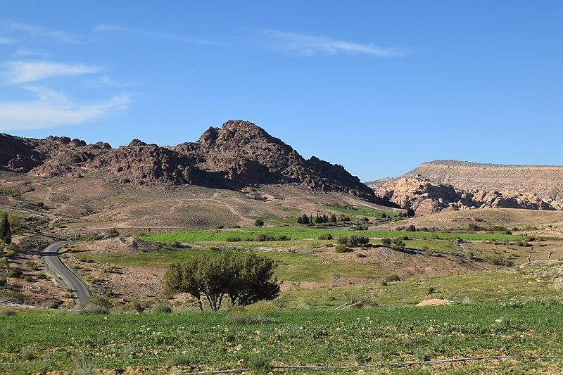 File:Road From Little Petra to Wadi Araba.jpg