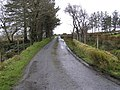 Road at Cronalaghy - geograph.org.uk - 723515.jpg