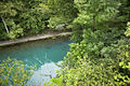 Roaring River Spring from Above.jpg