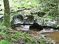 Rock Formations on the River Nedd (Neath) - geograph.org.uk - 81023.jpg