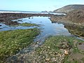 Rock pools on Newgale - geograph.org.uk - 966288.jpg