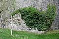 Rothenburg ob der Tauber, Stadtmauer, Klosterhof, 001.jpg