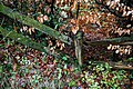 Rotting post and rail fence on Sedgwick Lane, Nuthurst, West Sussex.jpg