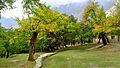 Royal Garden of Altit Fort Hunza.jpg