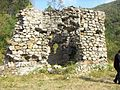 "Ruinele mănăstirii ""Sf. Treime"" - Vişina-Img-2.jpg"