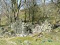 Ruins at Bryn Ambor, Cwm Pysgotwr Fawr, Ceredigion - geograph.org.uk - 1219062.jpg