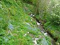 Ruisseau de Labach pont D76 amont (2).JPG