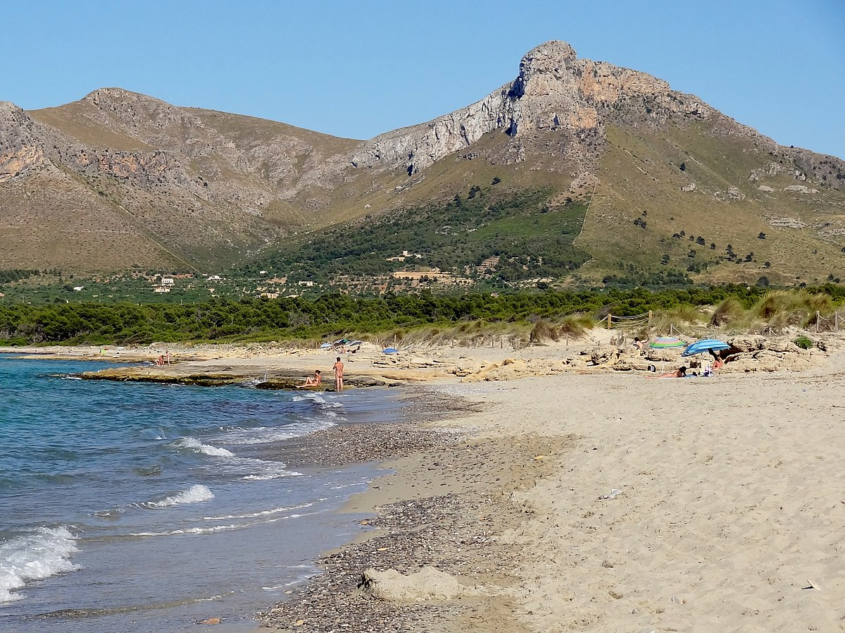 Playa De Alcudia Hotels