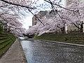 Sakurabashidori, Toyama, Toyama Prefecture 930-0004, Japan - panoramio (2).jpg