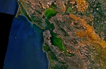 San Francisco Bay NASA World Wind Globe.jpg