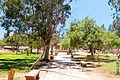 San Vicente, Ensenada BC Mexico Parque Municipal.jpg
