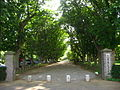 Sanrizuka-memorial-park,jnarita-city,japan.jpg