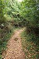 Santoña - trail.jpg