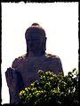 Saranath.jpg