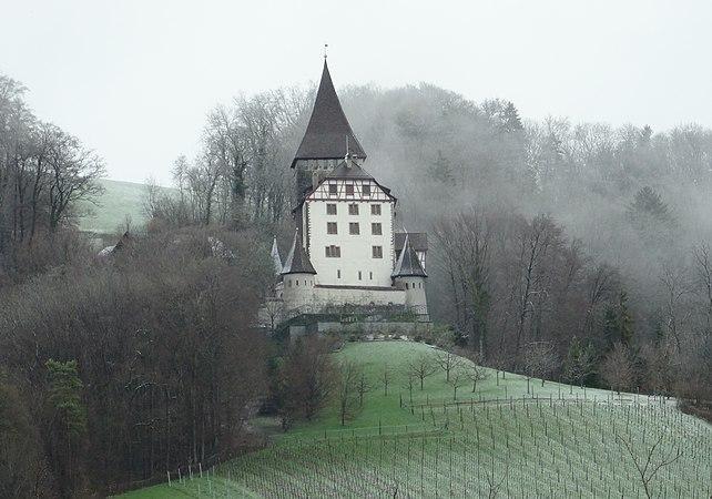Schloss Weinfelden.jpg