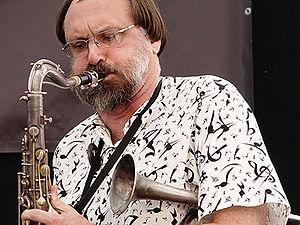 Scott Robinson (jazz musician) - Image: Scott robinson DSC08861