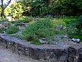 Scottish Garden, Rotary Botanical Gardens.jpg