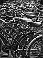 Sea Of Bikes (180160397).jpeg
