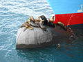 Sea lions relaxing on the bulb (7099725097).jpg