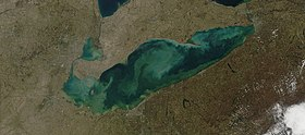 Sediment in Lake Erie.jpg