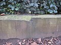Sefton Park - perimeter wall bench mark ^3 - geograph.org.uk - 1711723.jpg