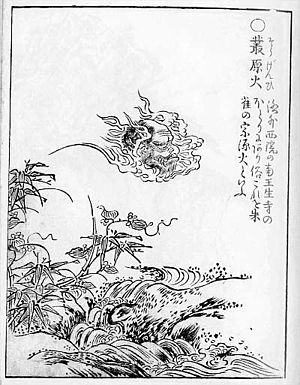 "Onibi - ""Sougenbi"" from the ""Gazu Hyakki Yagyō"" by Sekien Toriyama"