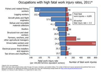 Occupazioni con alto tasso di mortalità, 2006, Stati Uniti.[4]