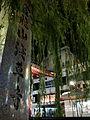 Sensōji, Tokyo.jpg