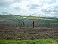 Setting up polytunnels for strawberry growing, West Craigie Farm - geograph.org.uk - 192777.jpg