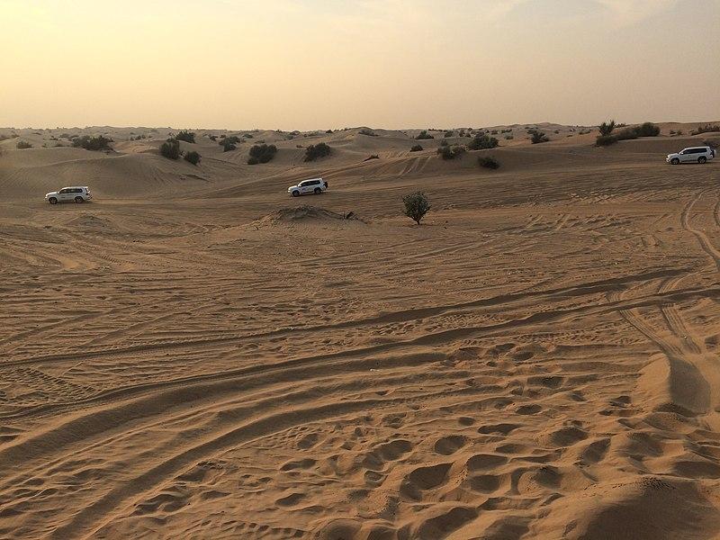 Sharjah desert 1.jpg