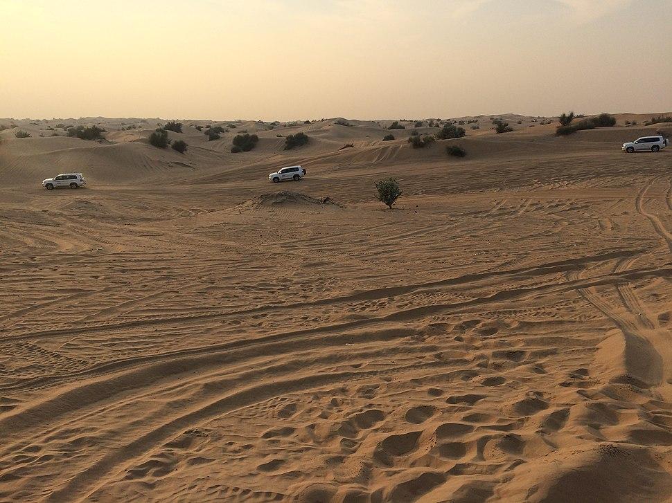 Sharjah desert 1
