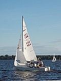 Shark 24 Sailboat 2257.jpg