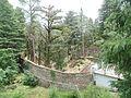 Shimla (25).jpg
