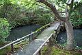 Shin-Yakushiji08s3872.jpg