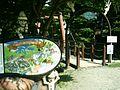 Shishigase, Takashima, Shiga Prefecture 520-1142, Japan - panoramio - yokoyokoi (32).jpg