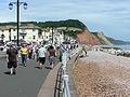 Sidmouth seafront devon arp.jpg
